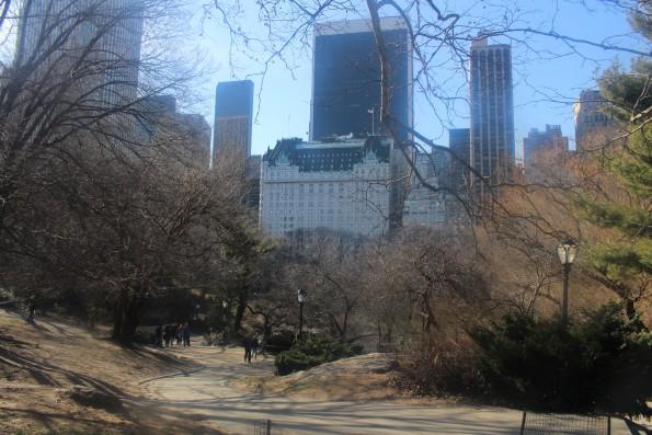Central park plaza hotel