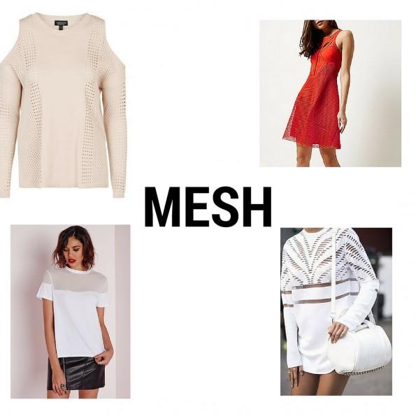 Mesh clothing