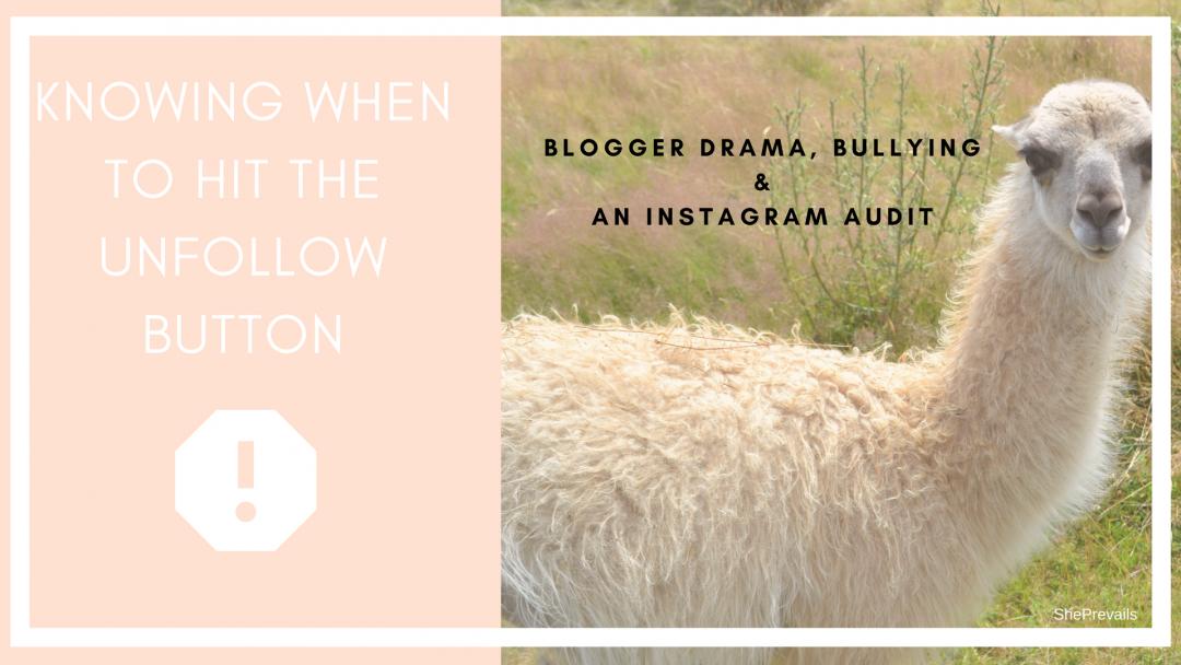 Blogger Drama, Bullying & an Instagram Audit (2)
