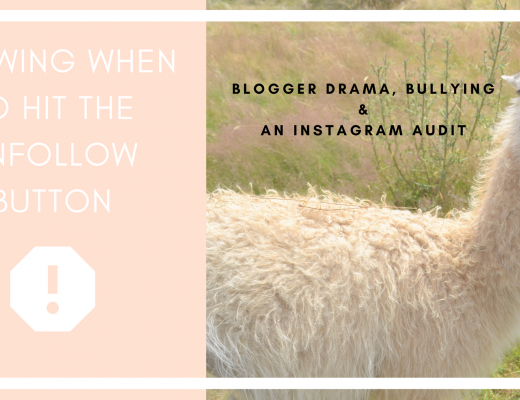 Blogger Drama, Bullying & an Instagram Audit (2)