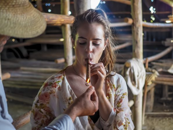 Cuban cigar farm