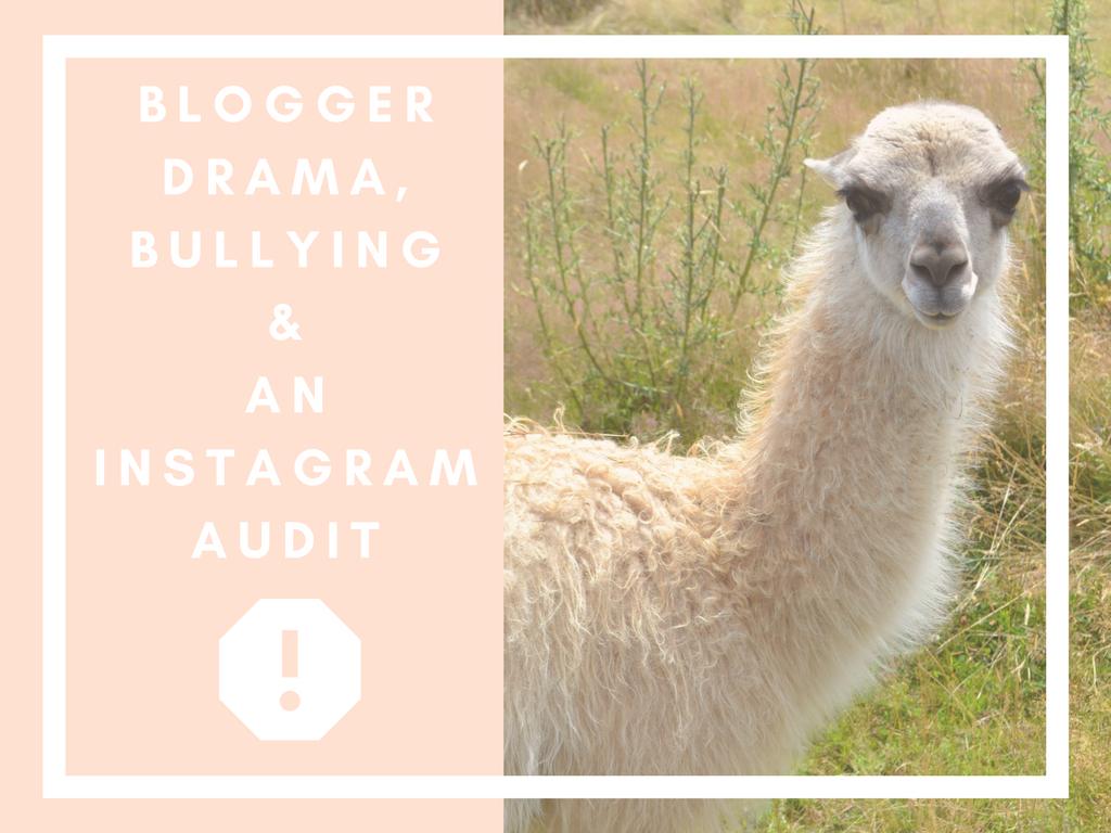 Blogger Drama, Bullying & an Instagram Audit